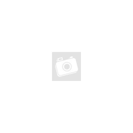 Fujitsu M460/Intel Core 2 Duo E6850 2x3,0Ghz CPU/2GB DDR2 Számítógép